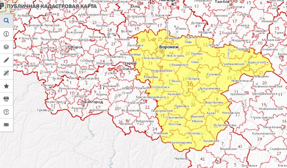 Публичная кадастровая карта - Воронежская область